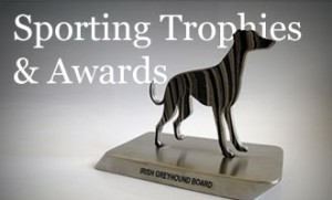 created-trophies-awards-sporting